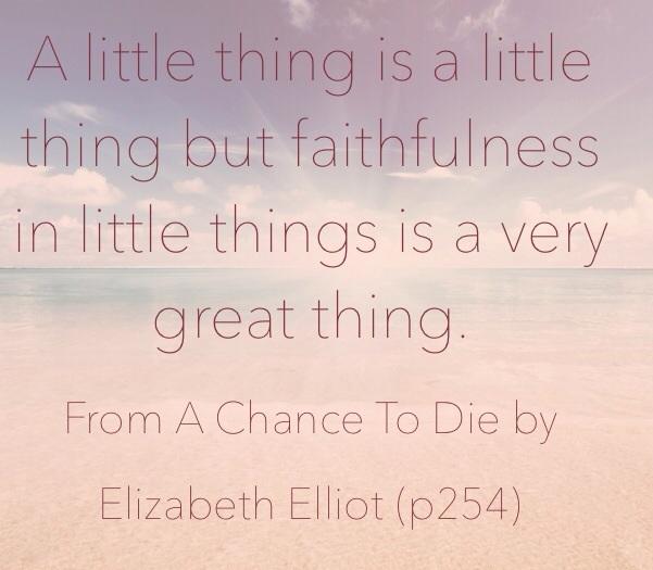 Faithfulness in little